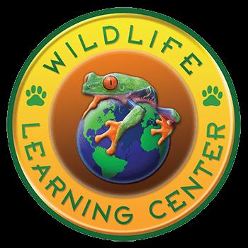 Sloth Yoga Fundraiser for the Wildlife Learning Center